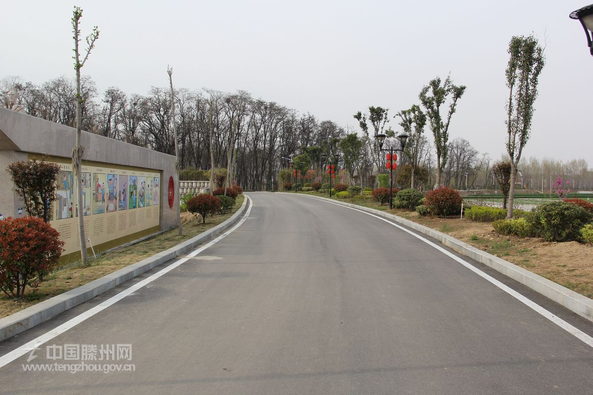 鲁班湿地公园道路绿化